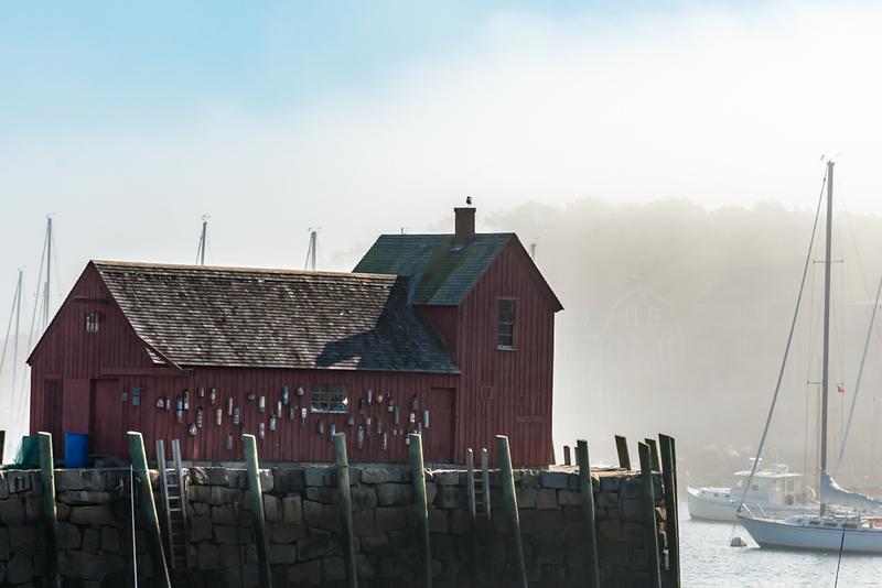Motif1 in fog