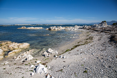 South Bay, Kaikoura