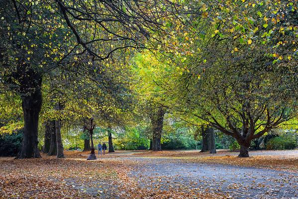 Christchurch Botanical Gardens, NZ
