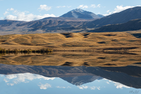 Reflections and textures,  Lake Clearwater
