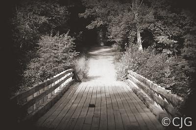 Bridge (Black & White)
