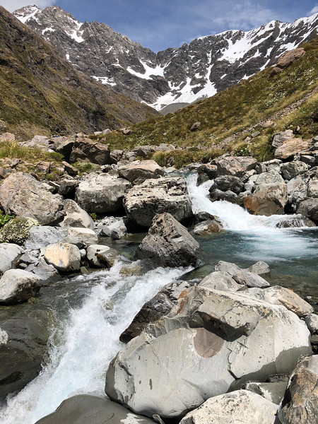 Otira Valley,  Arthur's Pass