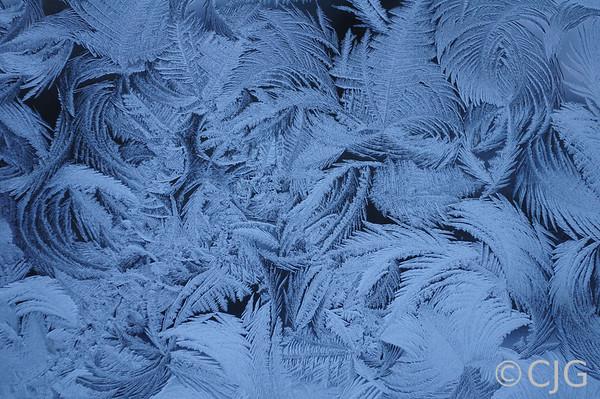 Jack Frost's Handywork