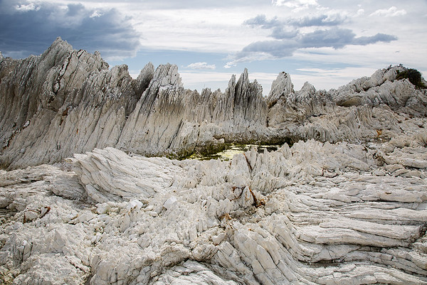 Tilted limestone formations and rock pool - Kaikoura Coastline