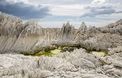 Tilted limestone formations and rock pool - Kaikoura