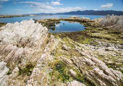 South Bay - Kaikoura Peninsula