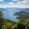 Fitzroy Bay,  Pelorus Sound