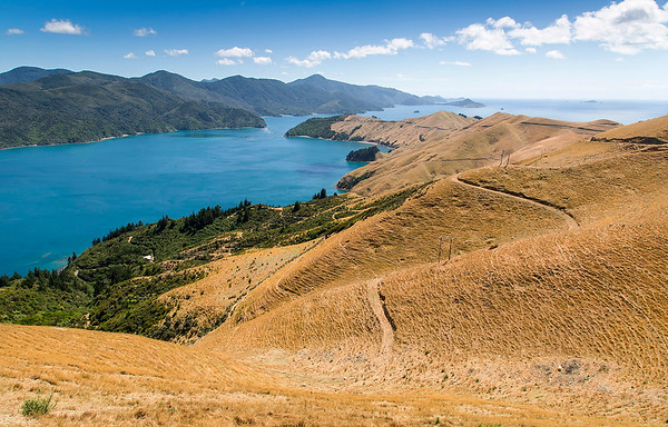 French Pass  - Marlborough Sounds NZ