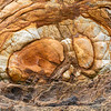 Rock abstract on Onawe Peninsula