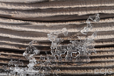 Ice patterns on some rustic wood.