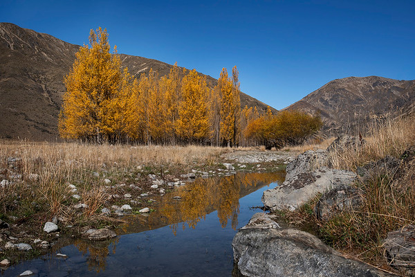 Autumn Colours on Molesworth Station