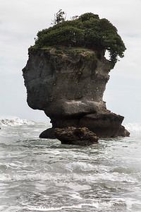 Rock head, Motukiekie Beach   - West Coast NZ