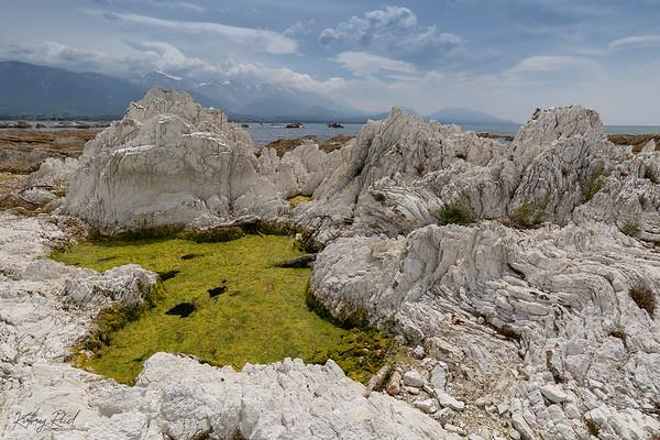 Lime stone rock pool, Kaikoura