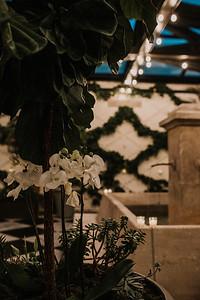 Oxford Exchange Tampa Wedding