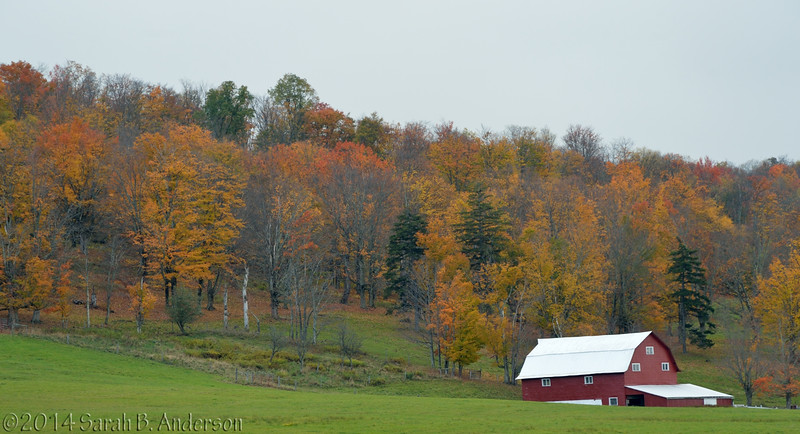 Doc's Farm<br /> Tucker County, WV<br /> October 2014