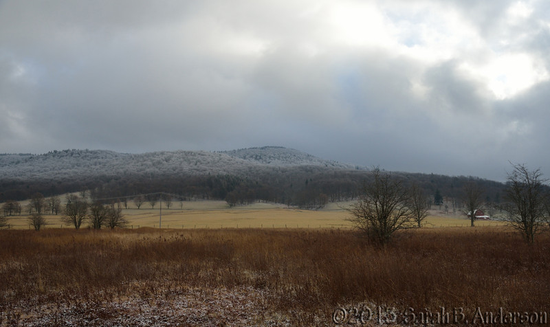 Looking at Whitegrass<br /> from the Canaan Valley NWR<br /> Tucker County, WV<br /> December 2013