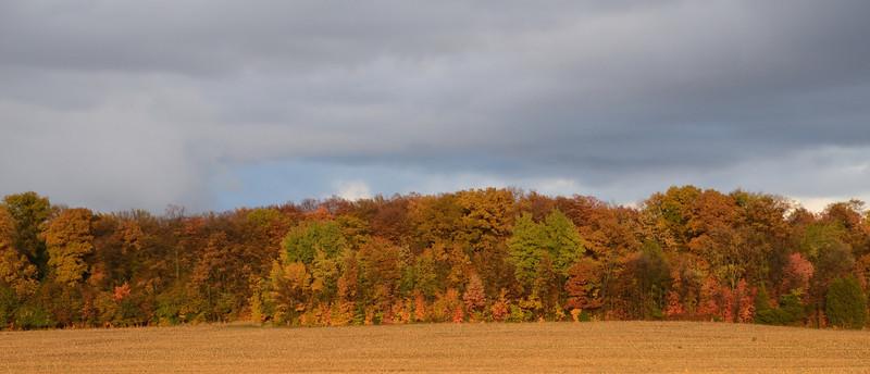 Sanford, MI<br /> October 2013