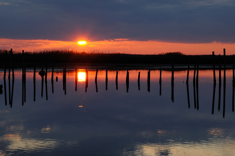 Sunset along the Wildlife Drive<br /> <br /> Blackwater NWR<br /> Dorchester County, Maryland<br /> <br /> January 2012