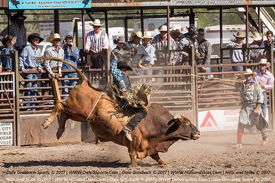 Last Stand Rodeo