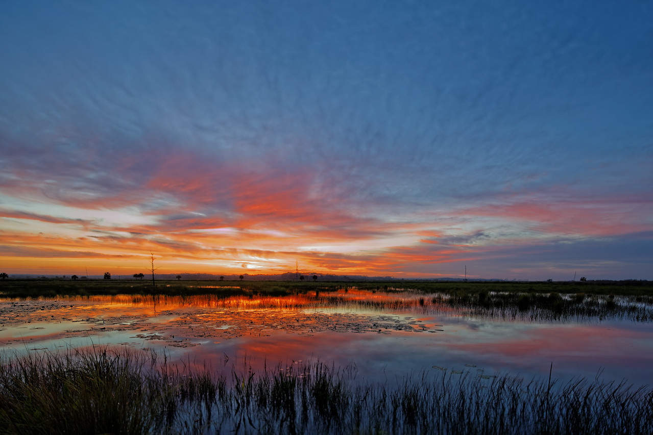 Dawn over the Wetlands of St Marks NWR