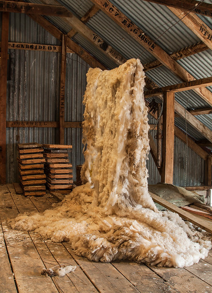 Wool fleece in old historic shearing shed, St James Conservation Area