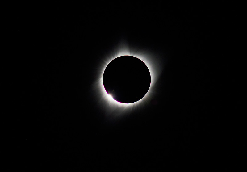 Corona of the total eclipse