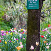 Please Do Not Pick the Flowers Napa March 2020