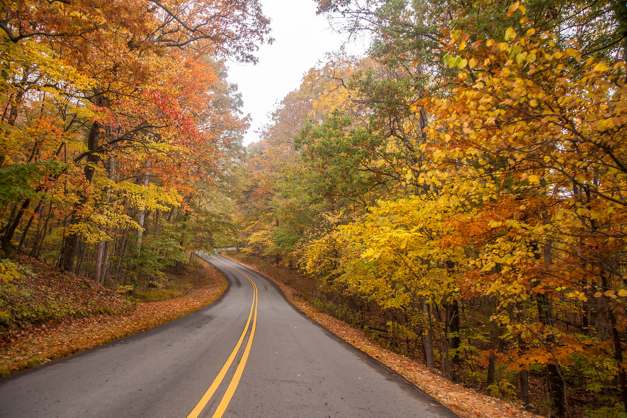 Pilot Mountain Drive
