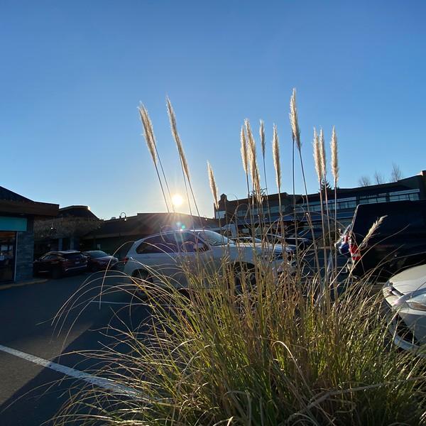 parking lot lens flare