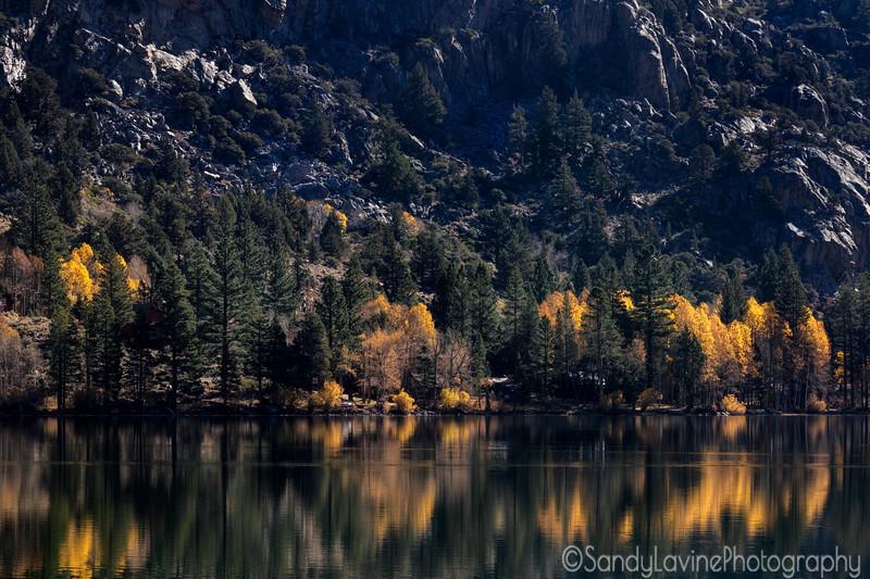 Silver Lake Fall 2020 Two
