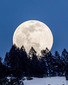 Woorm Moonrise