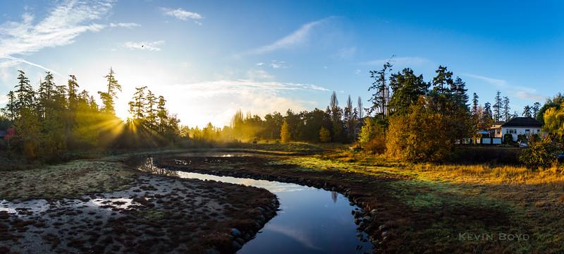 sunlight on the stream - wide