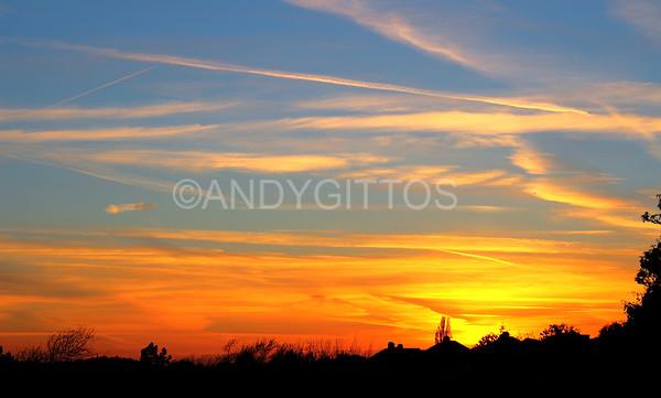 Gladstone Park Sunset
