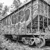 Abandoned Freight Car