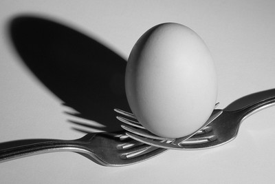 Egg and Shadow — Tojásárny