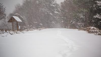 Lake Brandt Snowy Greenway