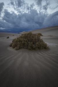 Sunset, Mesquite Flats Dune
