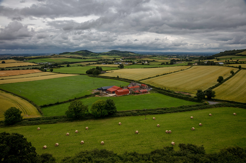 County Laois, Ireland (July 2017)