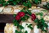 Seavey Roses May 2019