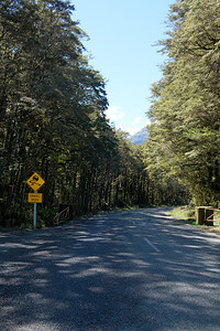 Start of a gravel road in Fjordland National Park, South Island New Zealand.