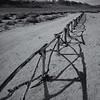 Manzanar Cemetery Fence