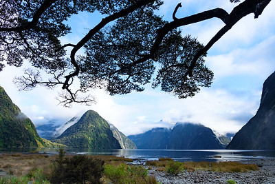View over Milford Sound, Fjordland, New Zealand