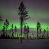 Aurora Kiruna
