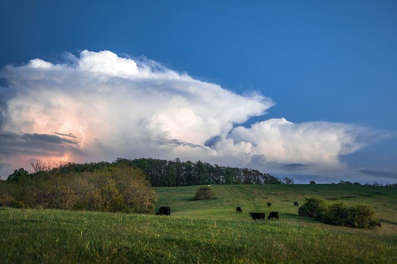 Thunder Field