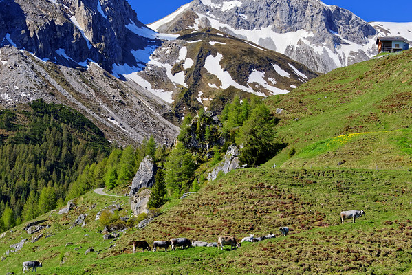 Naturpark Beverin, Graubünden, Switzerland