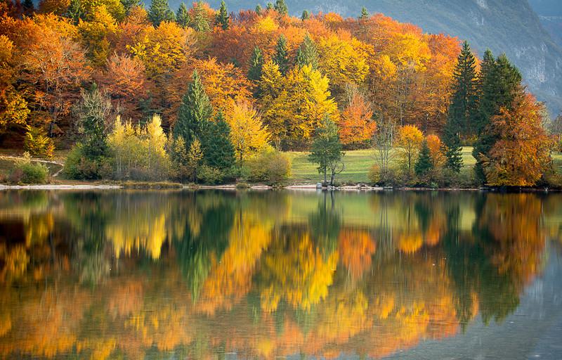 Autumn foliage, Lake Bohinj, Slovenia