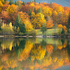 Autumn foliage, Lake Bohinj, Slovenia