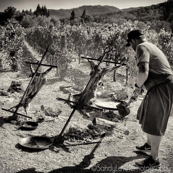Vineyard Roast