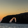 Arch and sea stack at dawn