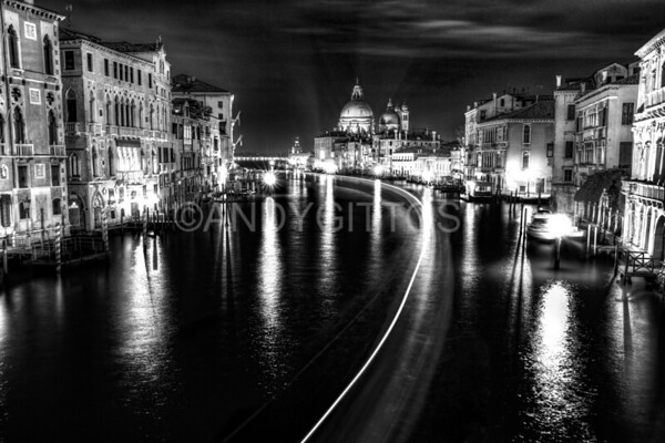 B&W Accademia View